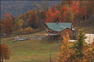 Home on hillside