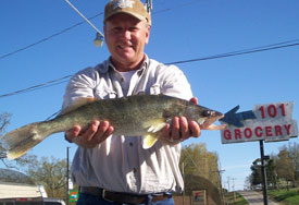 Fisherman with shows off walleye caught in Norfork Lake