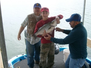Boys and dad with striped bass at Norfork lake.